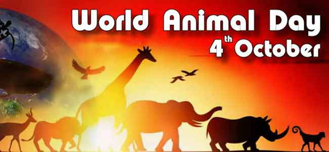 World Animal Day : 4th October